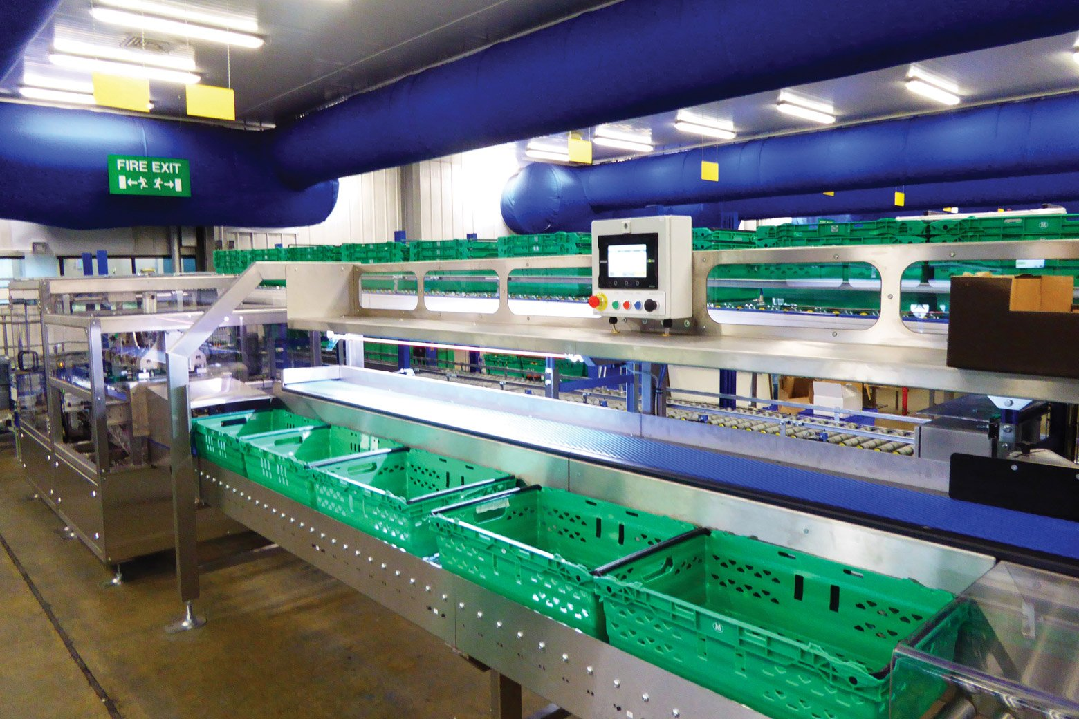 automated case packers