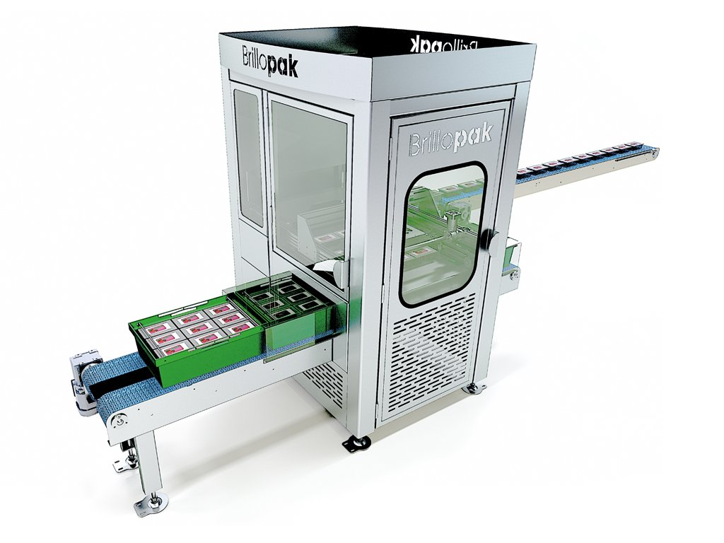 brillopak punnet paker automated packing machine